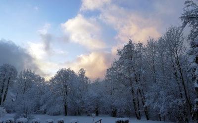 Kalt aber wunderschön – Winterimpressionen aus Halbach.